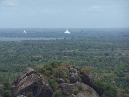 Stupas-at-anuradhapura, a view from Minintale